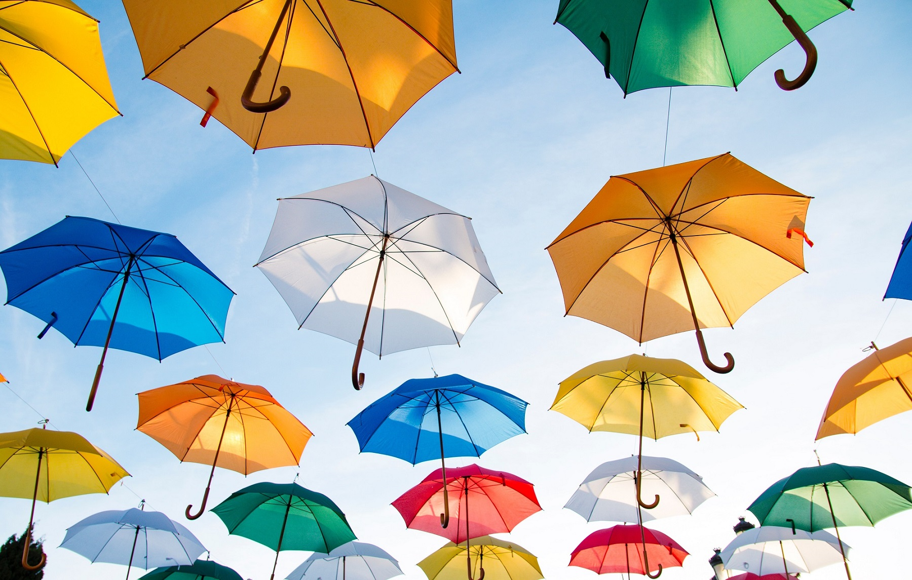 Reasons to Opt for an Umbrella Insurance Policy
